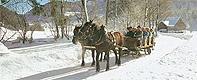 Pferdeschlittenfahrten in Fuschl